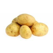 Картопля (договір) кг